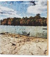 Ducks At The Beach Again Wood Print