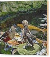 Ducks At The Koi Pond Wood Print