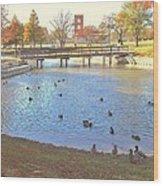 Ducks At The Park Pond Wood Print