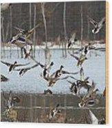 Ducks Away Wood Print