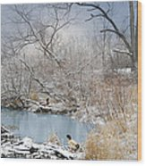 Ducks By The Pond Wood Print