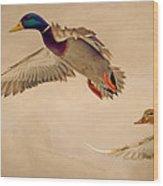 Ducks In Flight Wood Print