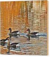 Ducks In The Fall Wood Print