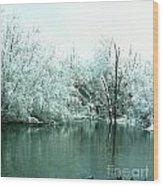 Ducks On A Snowy Pond Wood Print