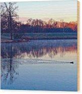 Duck's Sunrise Wood Print