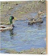 Ducks Unlimited Wood Print