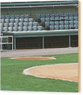 Dugout At The Old Ballpark Wood Print