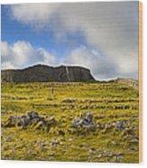 Dun Aengus - Ancient Irish History Wood Print