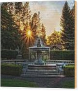 Duncan Gardens Water Fountain Wood Print by Dan Quam