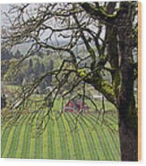 Dundee Hills Wine Country Wood Print