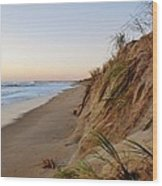 Dune Cut And Pier 5 11/03 Wood Print