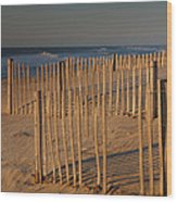 Dune Fences At First Light I Wood Print