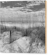 Dune Fences Wood Print