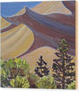 Dune Field Wood Print by Susan McCullough