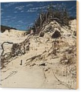 Dune Glue Wood Print by Adam Jewell