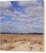 Dune Grass And Clouds Wood Print