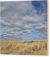 Dune Grass And Sky Wood Print