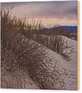 Dune Grass Wood Print
