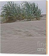 Dune Grass On Beach Dune Landscape Art Prints Wood Print