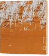 Dune Grasses Wood Print