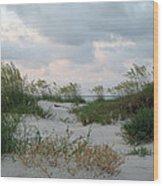 Dune Sea Oats Wood Print