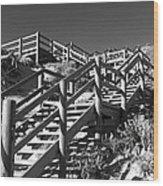 Dune Steps 04 Wood Print