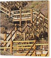 Dune Steps 06 Wood Print