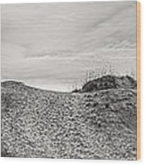 Dune Trail Wood Print