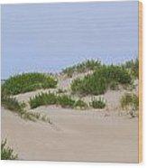 Dunes And Grasses 6 Wood Print