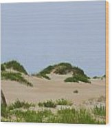 Dunes And Grasses 7 Wood Print