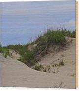 Dunes And Grasses 8 Wood Print