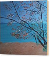 Lake Michigan Dunes Wood Print