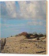 Dunes At Obx Wood Print
