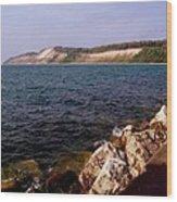 Dunes North Of Frankfort Michigan Wood Print
