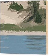 Dunes Of Lake Michigan Wood Print