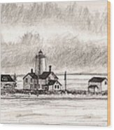 Dungeness Point Lighthouse Wood Print