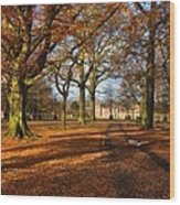 Dunham Massey Wood Print