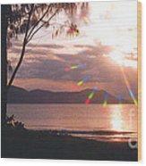 Dunk Island Australia Wood Print