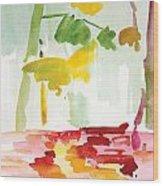 Dunnfield-creek-92013-16x12 Wood Print