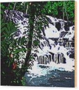 Dunns River Falls Jamaica Wood Print