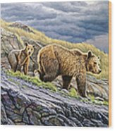 Dunraven Pass Grizzly Family Wood Print by Paul Krapf