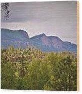 Durango Colorado Purgatory Wood Print