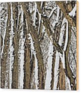 During The Storm Wood Print