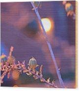 Dusk Flowers Wood Print