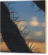 Dusk Settles On A Desert Cholla Cactus Wood Print