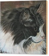 Dusty Our Handsome Norwegian Forest Kitty Wood Print