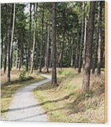 Dutch Country Bicycle Path Wood Print