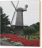 Dutch Windmill In Golden Gate Park Wood Print