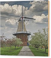 Dutch Windmill The Dezwaan On Windmill Island In Holland Michigan Wood Print