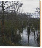 Dwarf Cypress Pool Wood Print